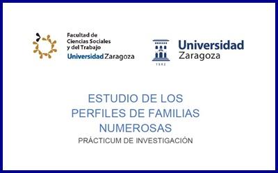 Practicum de investigación (UZ): perfiles de las familias numerosas
